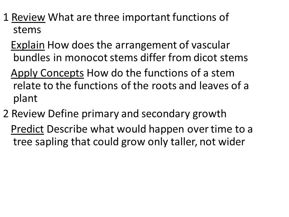 1 Review What are three important functions of stems Explain How does the arrangement of vascular bundles in monocot stems differ from dicot stems Apply Concepts How do the functions of a stem relate to the functions of the roots and leaves of a plant 2 Review Define primary and secondary growth Predict Describe what would happen over time to a tree sapling that could grow only taller, not wider