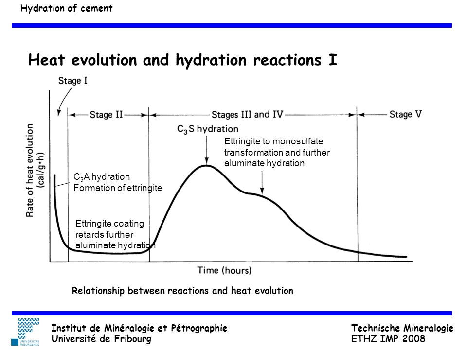 Heat evolution and hydration reactions I
