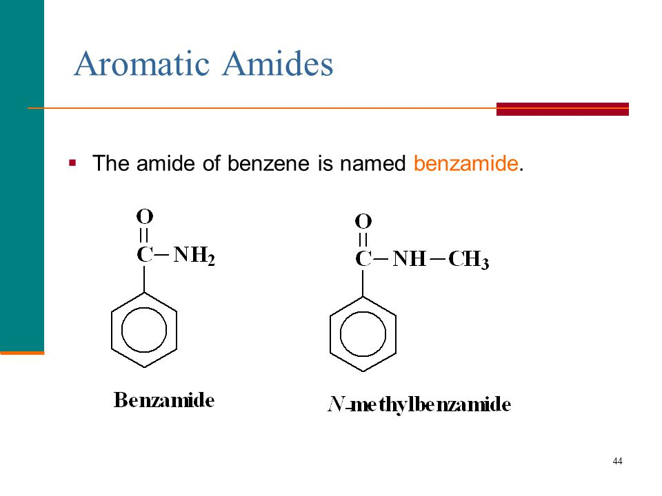 Lecture 7: Amines and Amides - ppt video online download