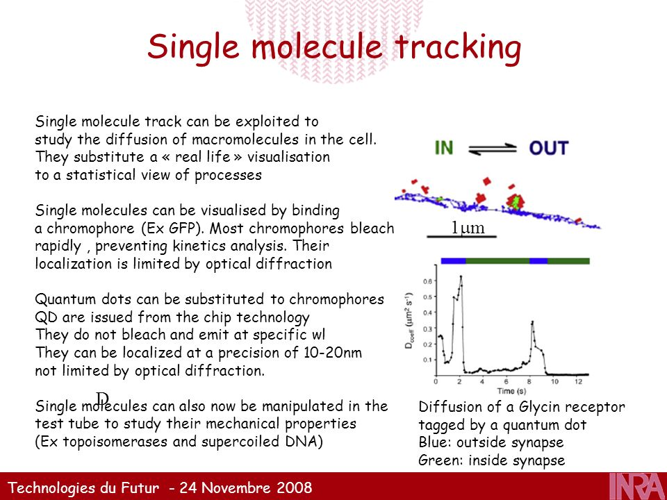 Single molecule tracking
