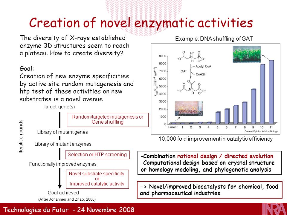 Creation of novel enzymatic activities