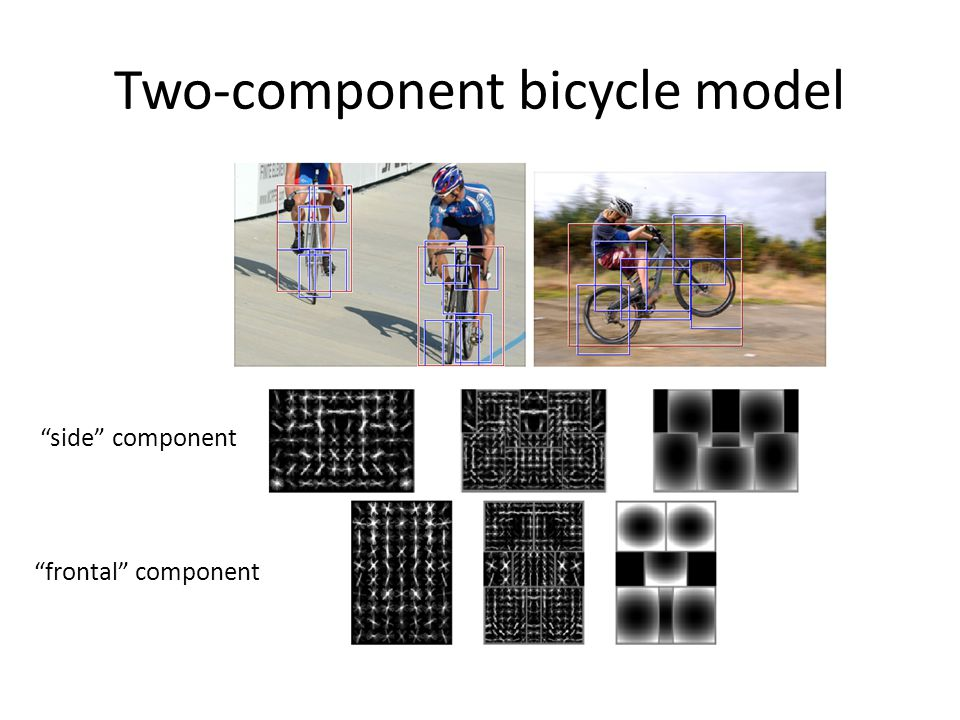 Two-component bicycle model