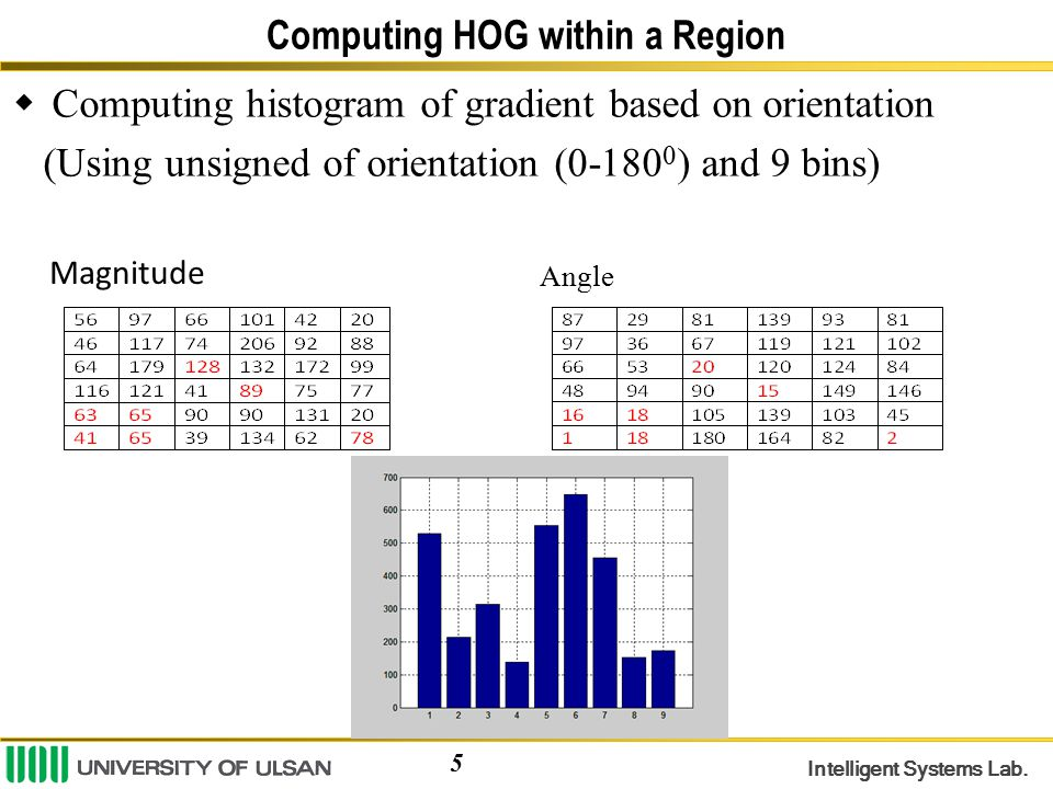 Computing HOG within a Region