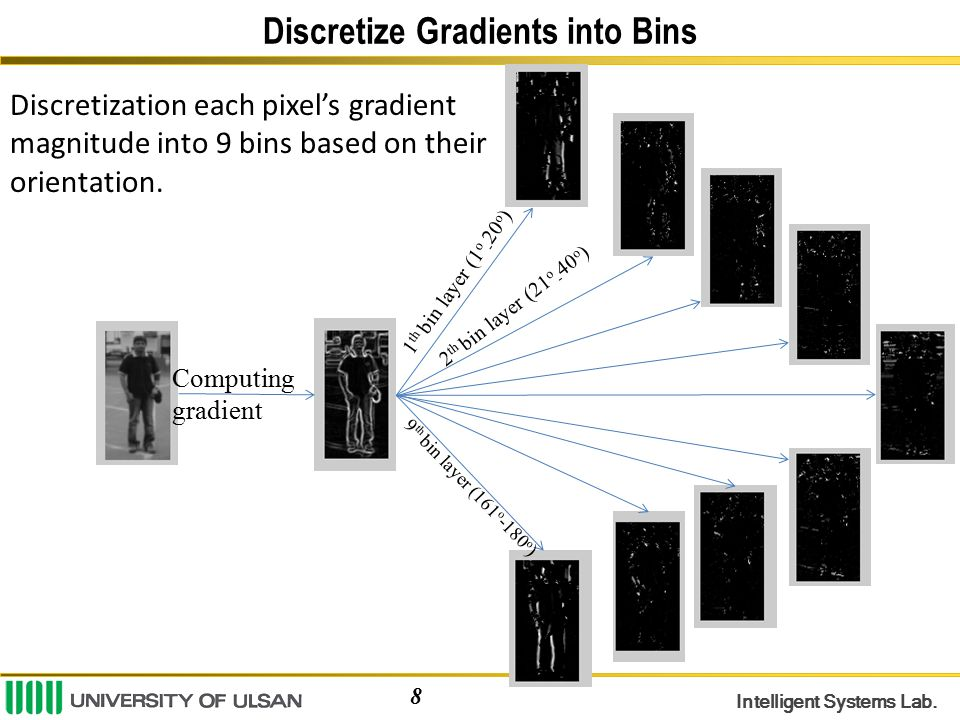 Discretize Gradients into Bins