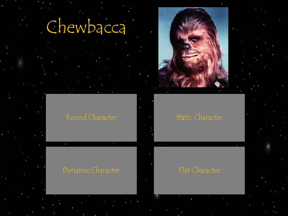 Chewbacca Round Character Static Character Dynamic Character