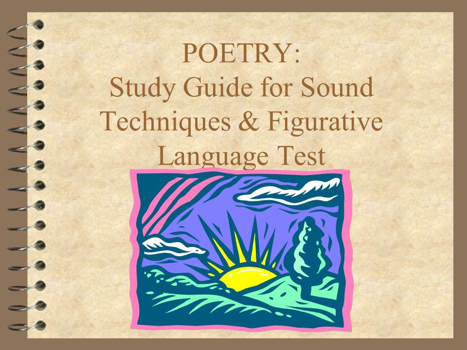 The Border Patrol : Artificial Language Test