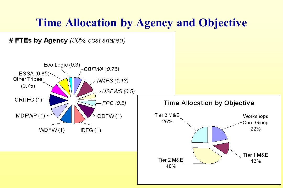 Time Allocation by Agency and Objective