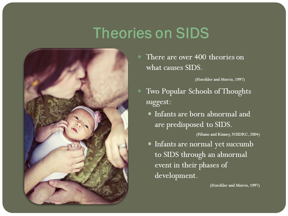 Theories on SIDS There are over 400 theories on what causes SIDS. (Horchler and Morris, 1997)