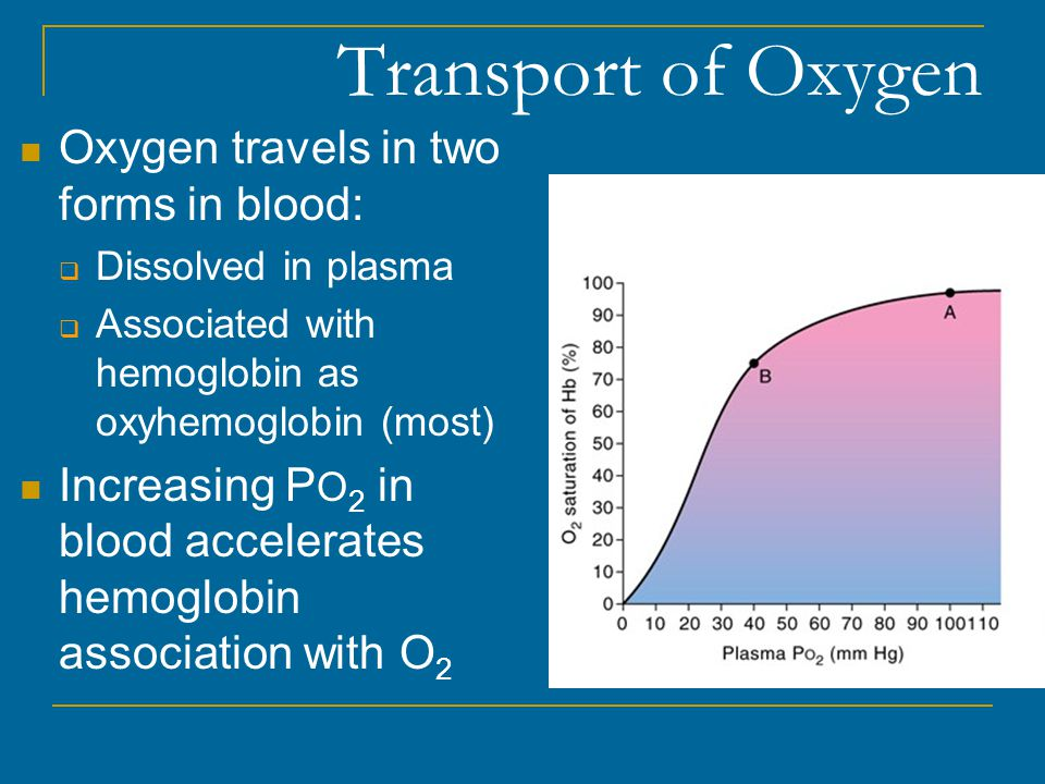 Transport of Oxygen Oxygen travels in two forms in blood:
