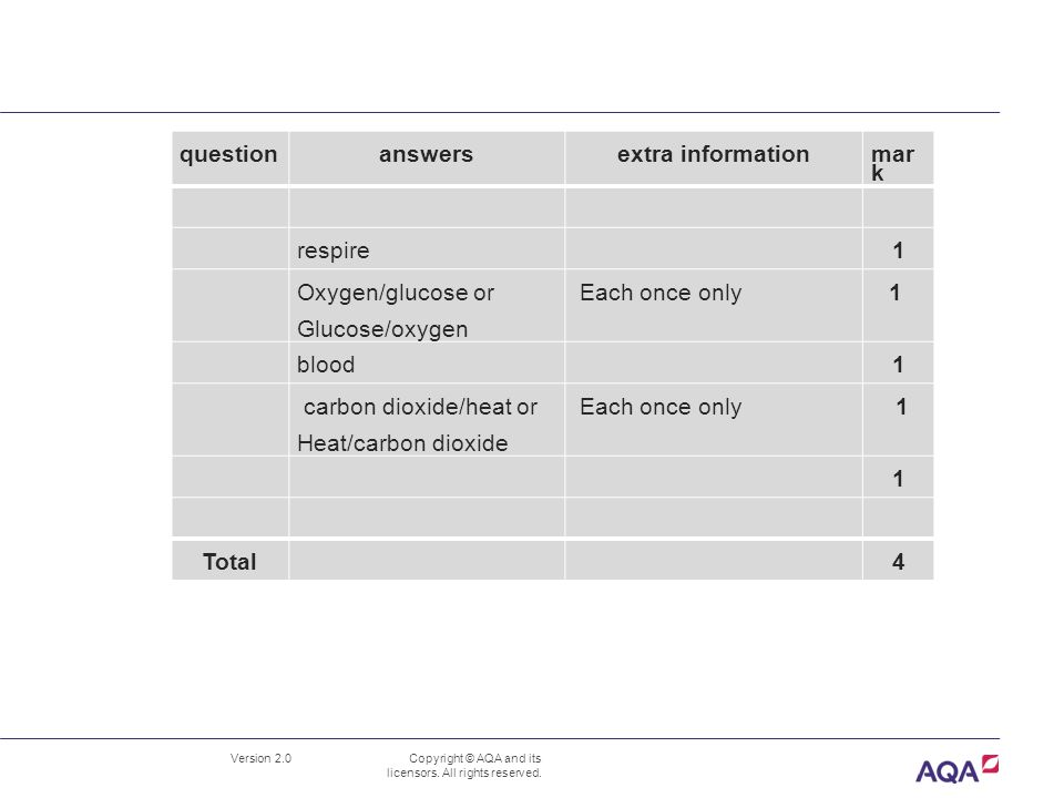 answers extra information Total 4