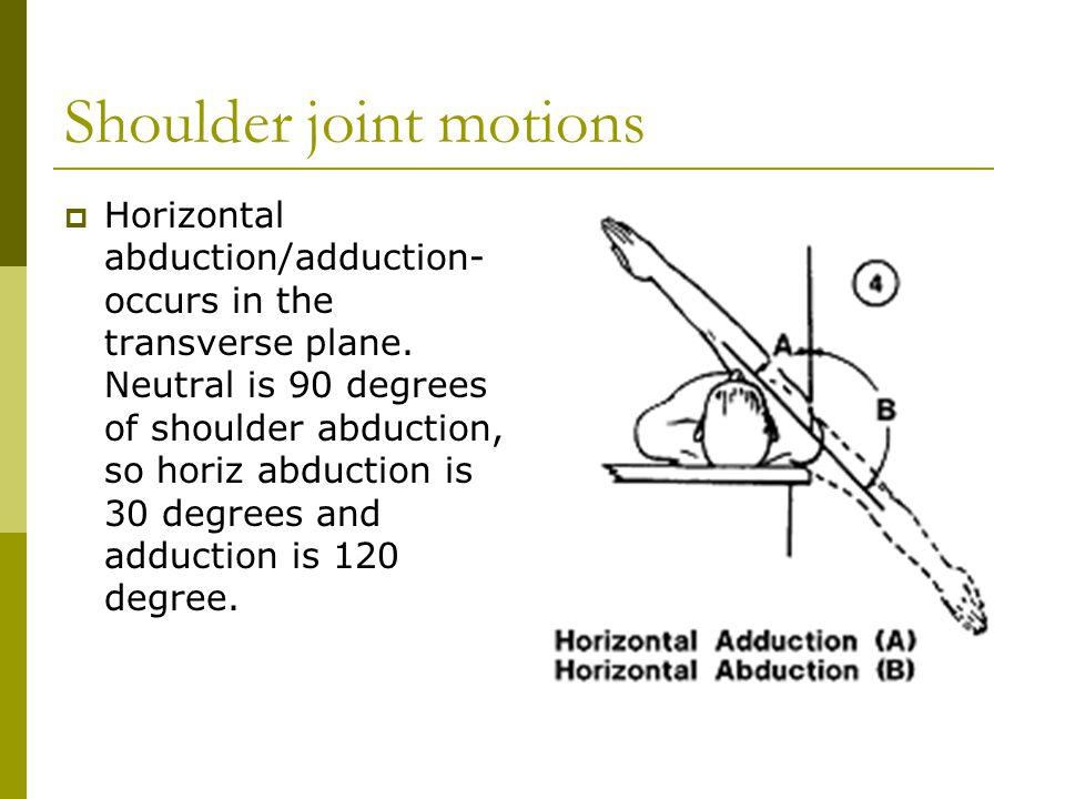 Shoulder Anatomy. - ppt video online download