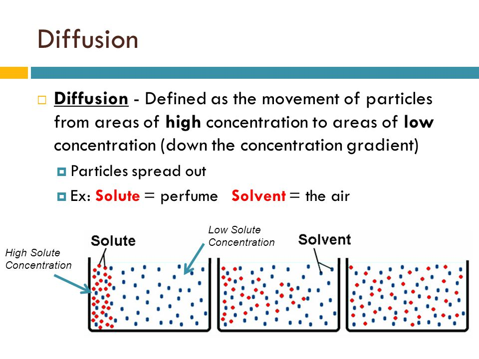 Diffusion and osmosis. - ppt video online download