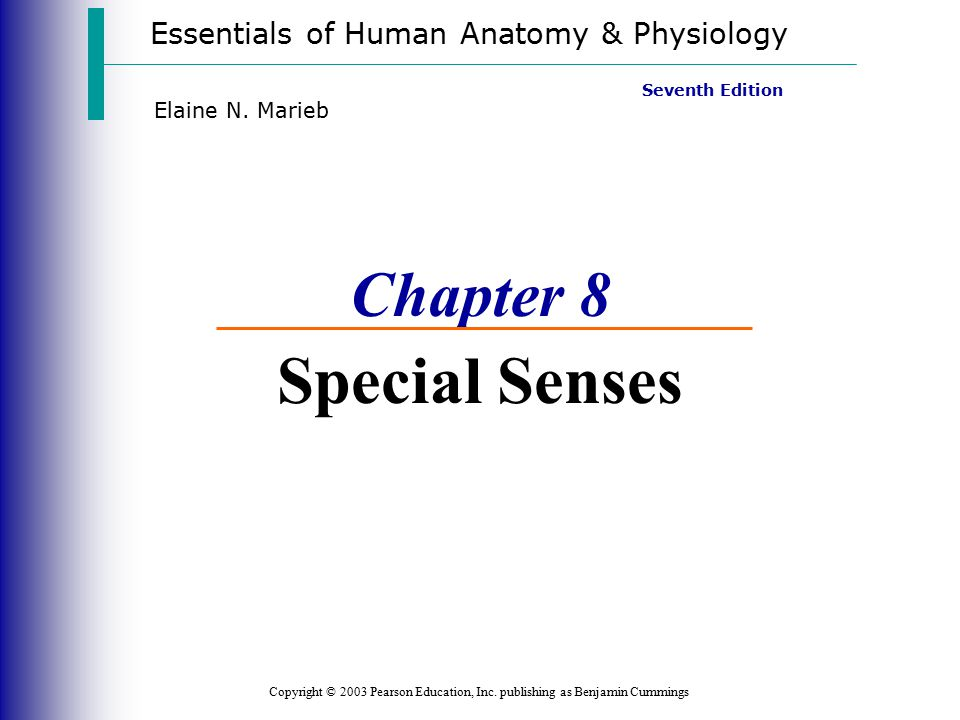 anatomy physiology chapter 8 special senses answer key