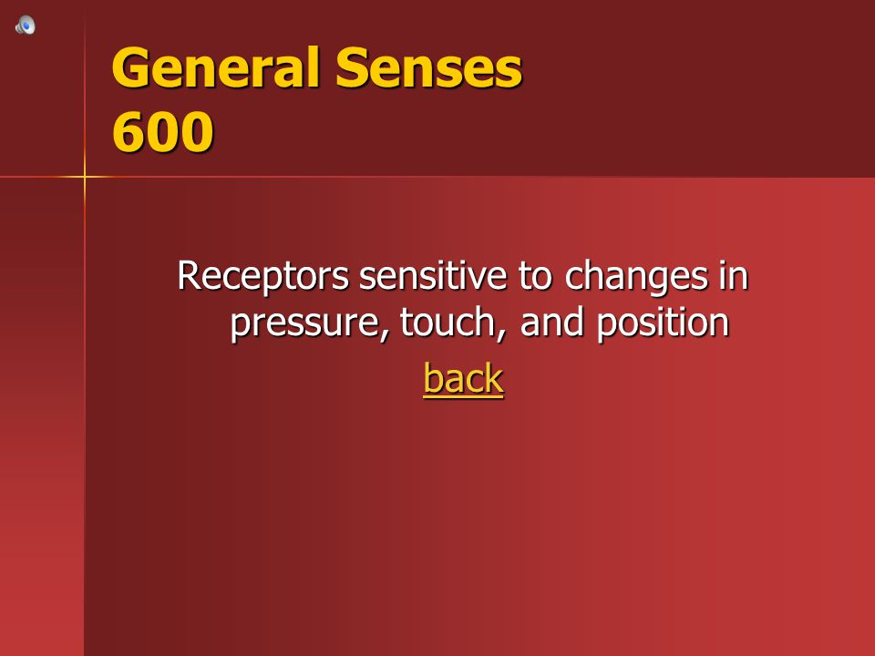 Receptors sensitive to changes in pressure, touch, and position