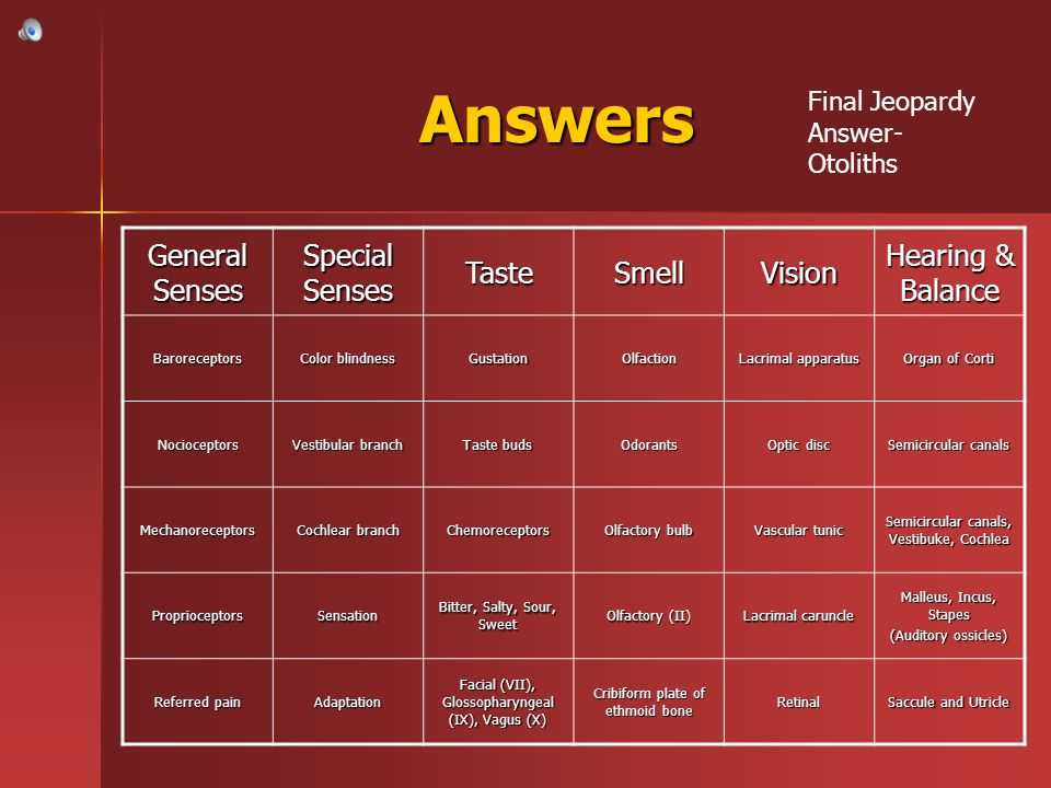 Answers General Senses Special Senses Taste Smell Vision