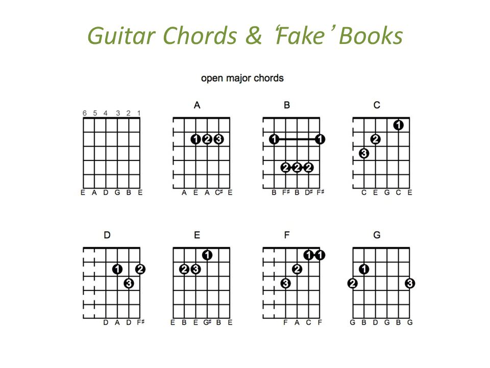 Folk Music and the Acoustic Guitar - ppt download