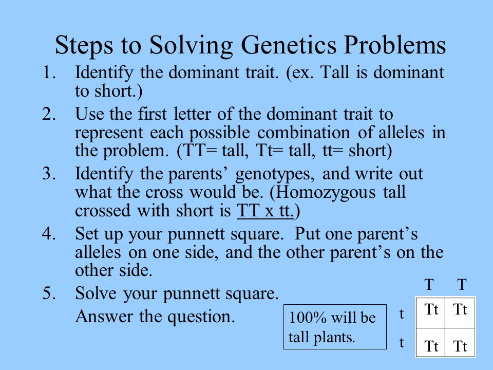 problem solving in genetics
