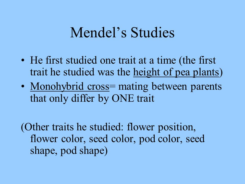 Mendel's Studies He first studied one trait at a time (the first trait he studied was the height of pea plants)