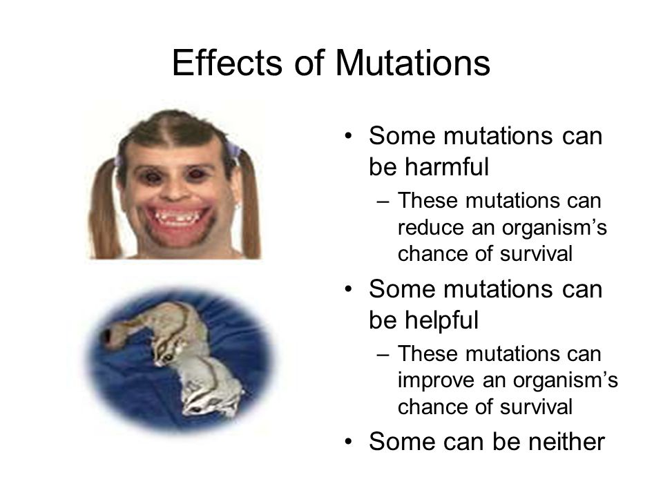Effects of Mutations Some mutations can be harmful