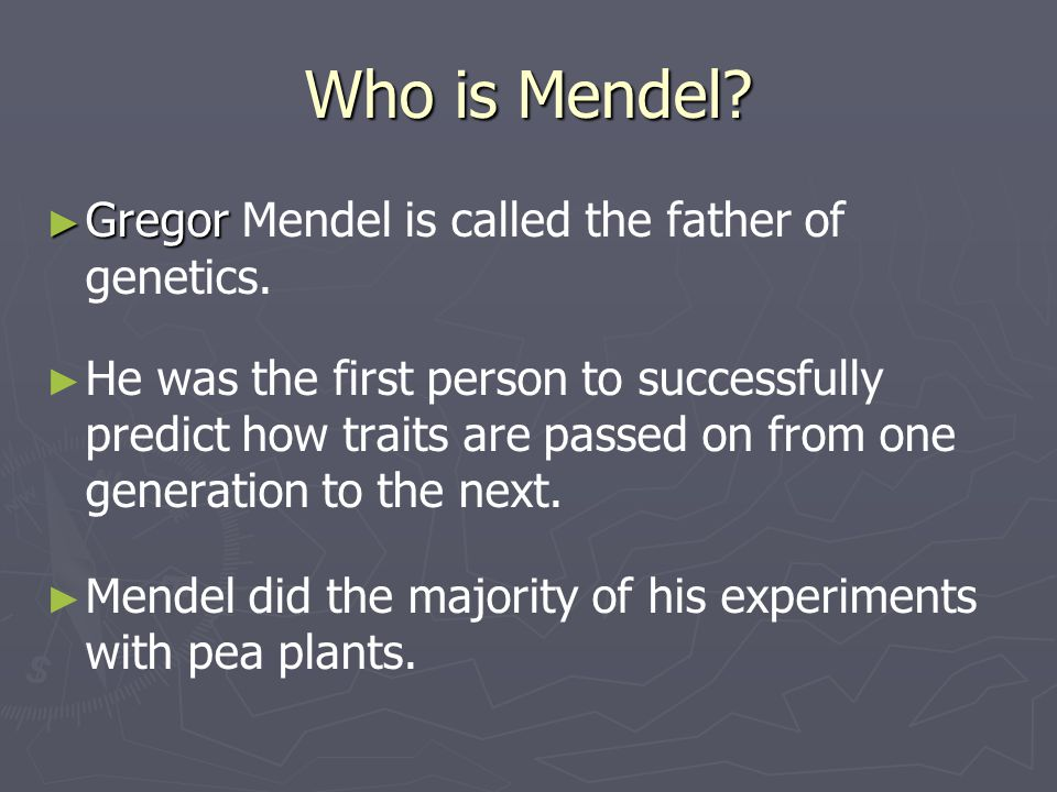 Who is Mendel Gregor Mendel is called the father of genetics.
