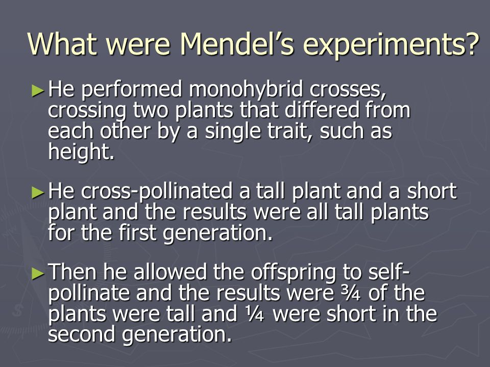 What were Mendel's experiments
