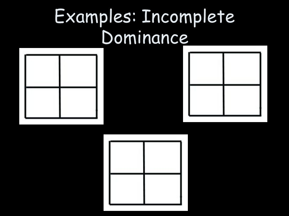 Examples: Incomplete Dominance