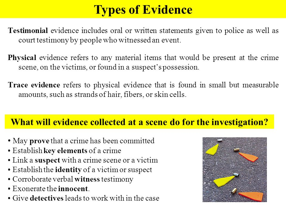 Crime Scene Basics Forensic Science Ppt Download