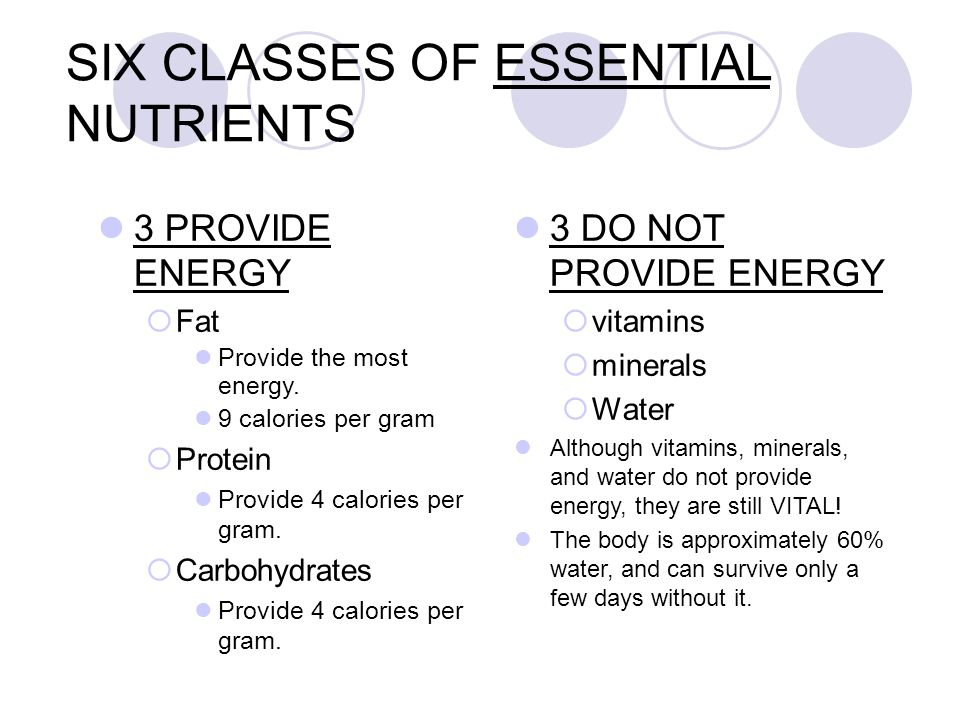 Six Cl Es Of Essential Nutrients