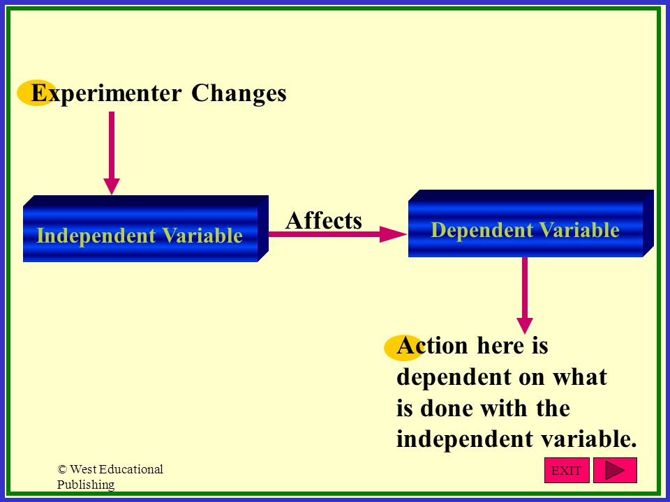 Experimenter Changes Affects Action here is dependent on what