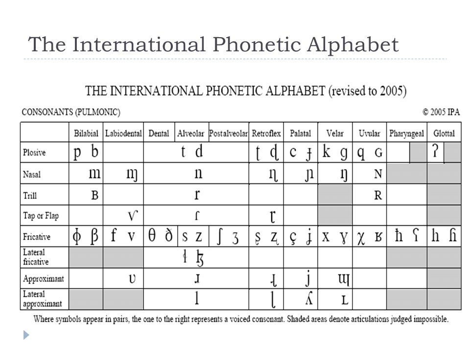 The International Phonetic Alphabet