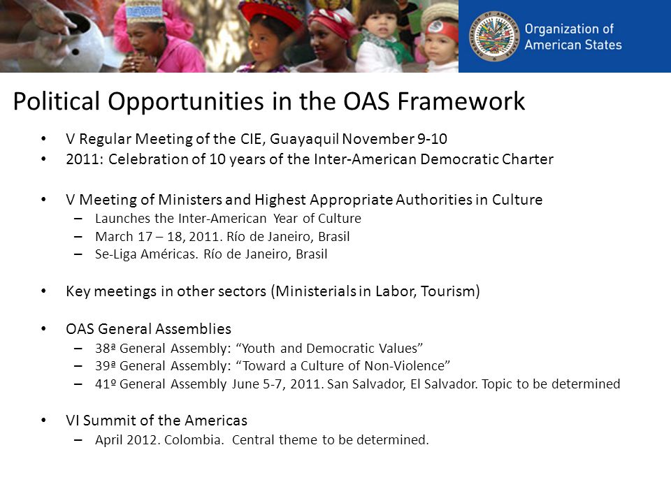 Political Opportunities in the OAS Framework