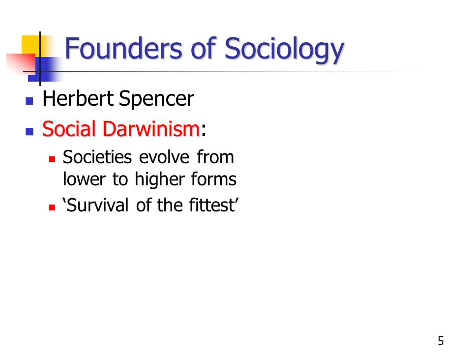 Founders of Sociology Herbert Spencer Social Darwinism: