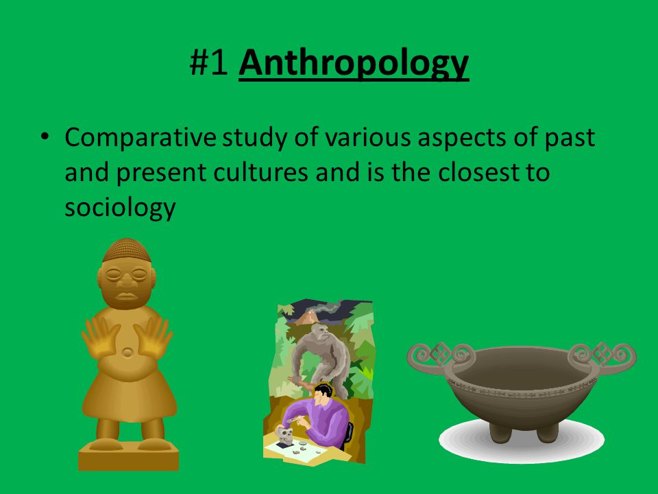 #1 Anthropology Comparative study of various aspects of past and present cultures and is the closest to sociology.