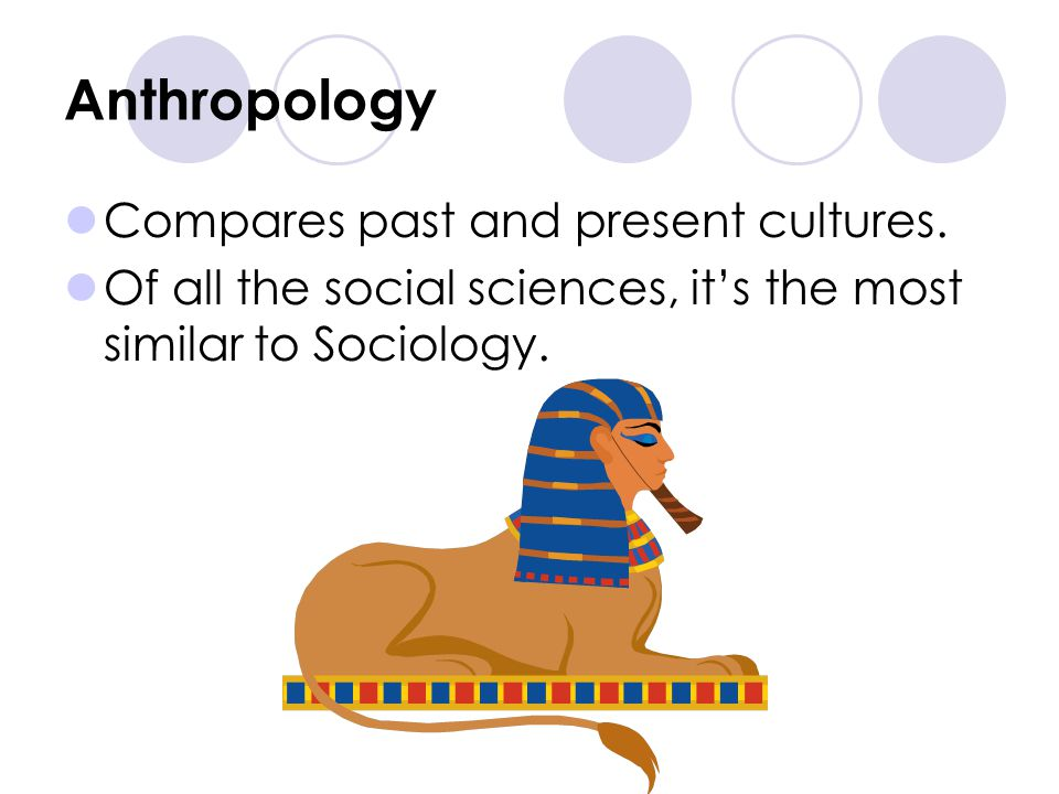 Anthropology Compares past and present cultures.