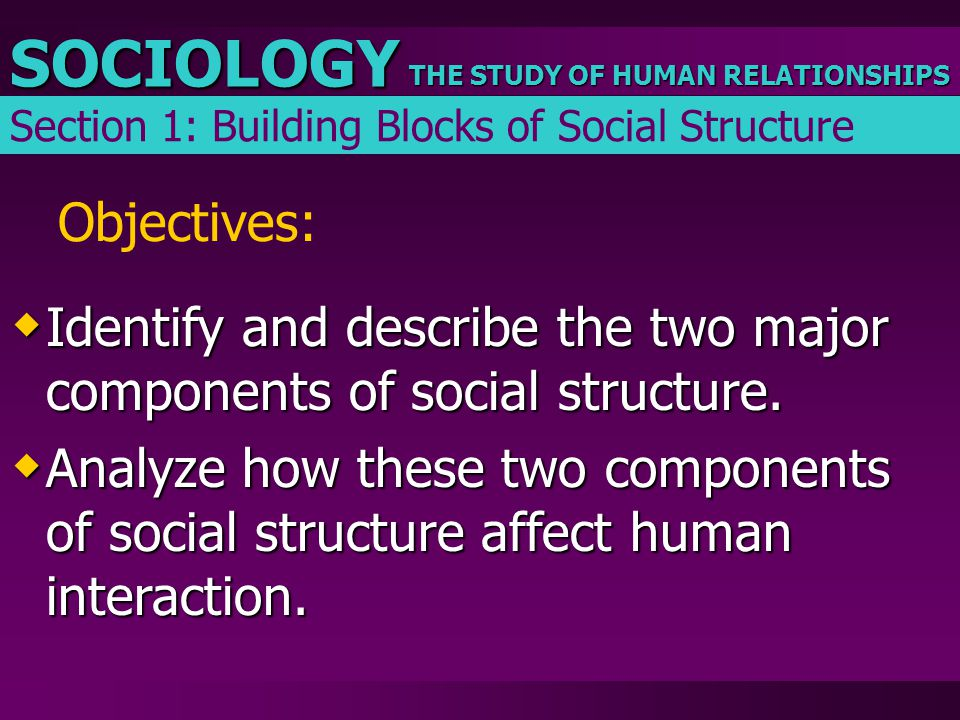Identify and describe the two major components of social structure.