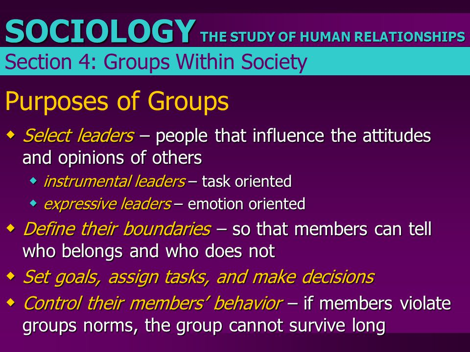 Purposes of Groups Section 4: Groups Within Society