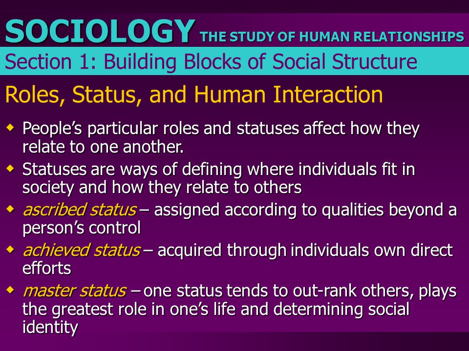 Roles, Status, and Human Interaction