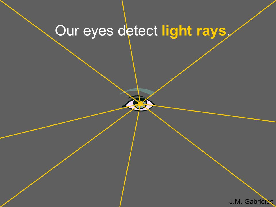 Our eyes detect light rays.