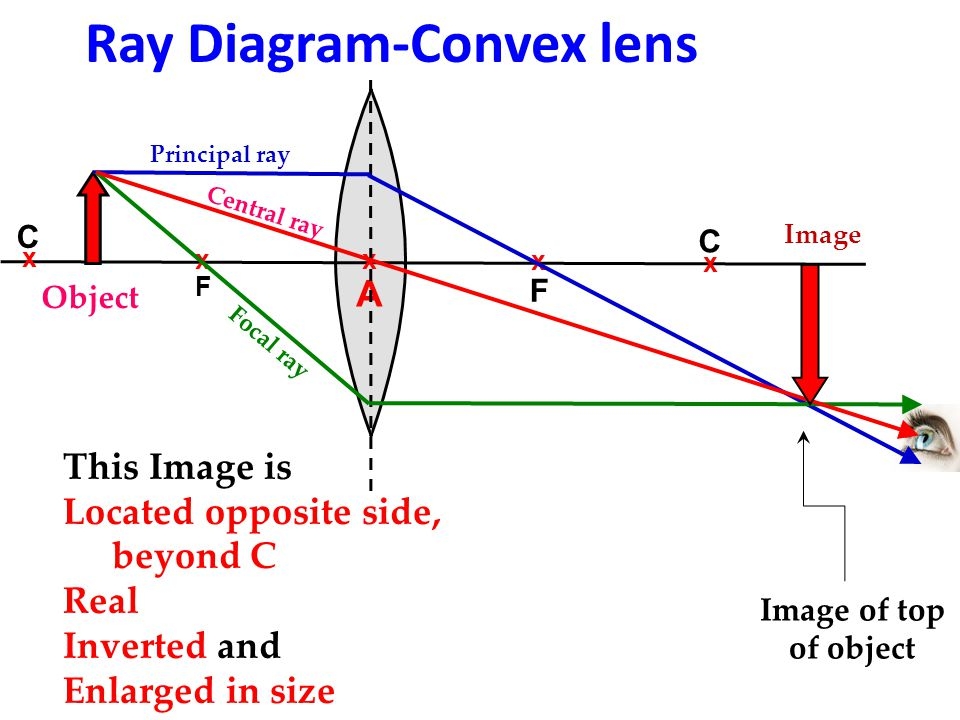 Drawing Ray Diagrams Convex Lens Electrical Work Wiring Diagram