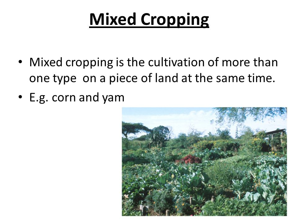 Crop Husbandry 5 1 Describe The Major Cropping Systems Ppt Video Online Download