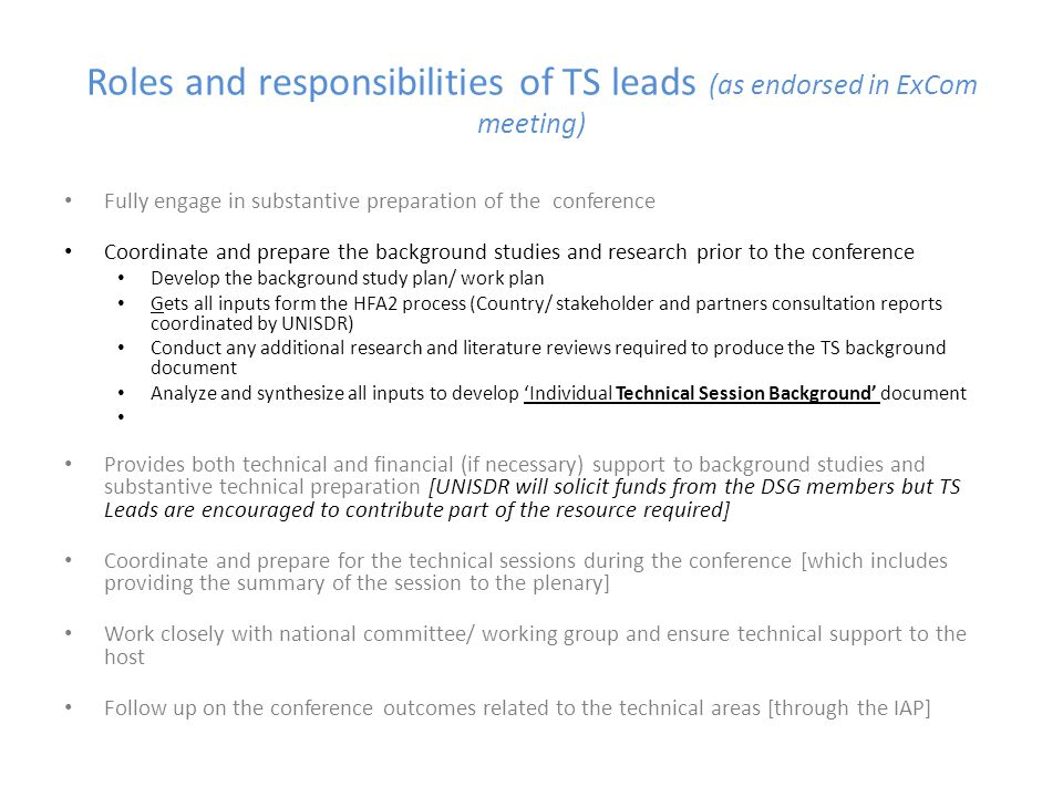 Roles and responsibilities of TS leads (as endorsed in ExCom meeting)