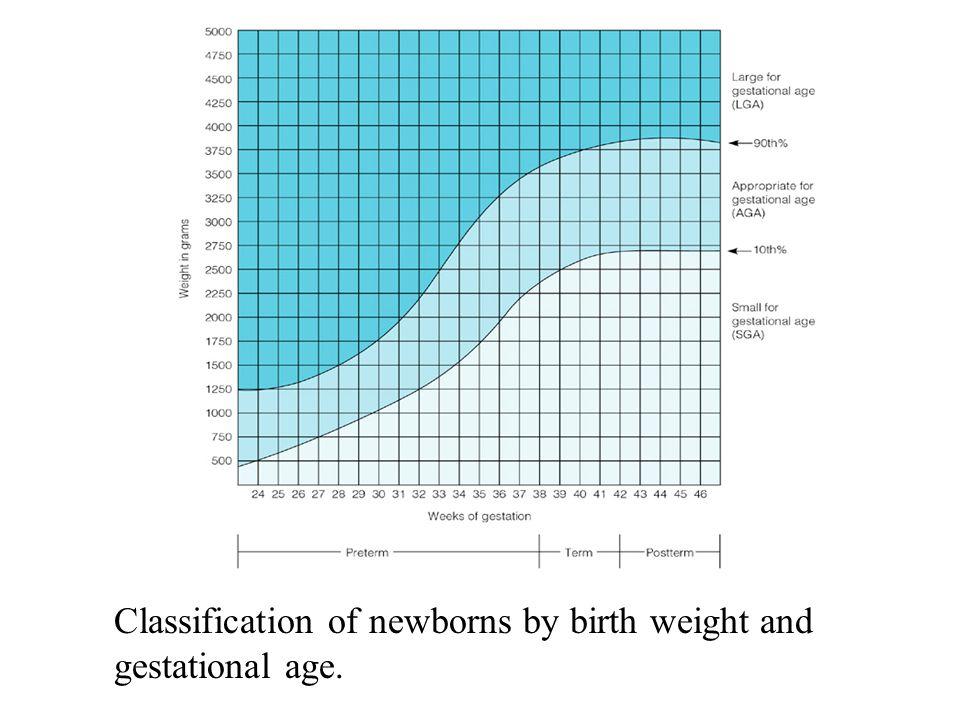 N106 Nursing Care Of The Newborn Ppt Download