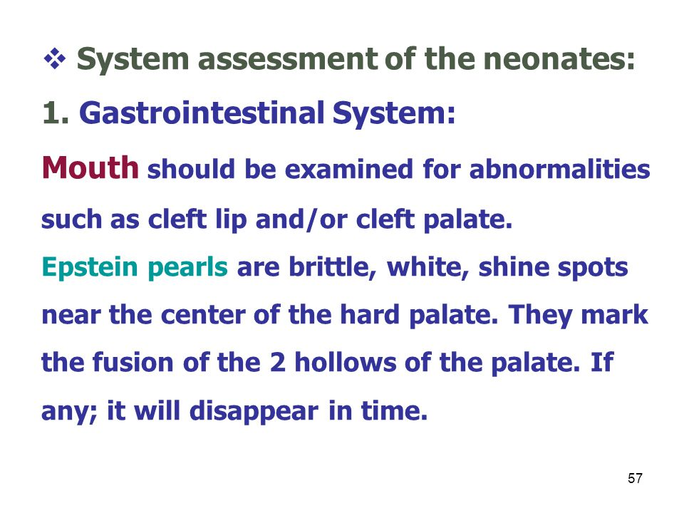 System assessment of the neonates: 1