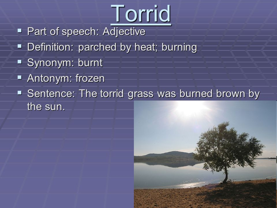 Torridly definition