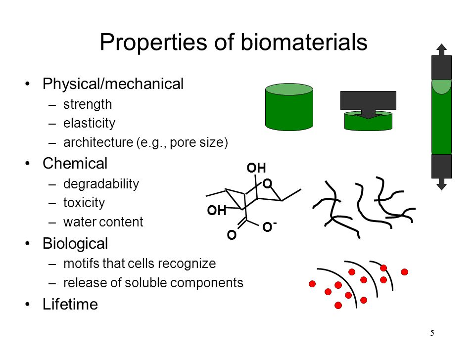 3 physical properties of biomaterials(3) (1). Ppt egrb 613.