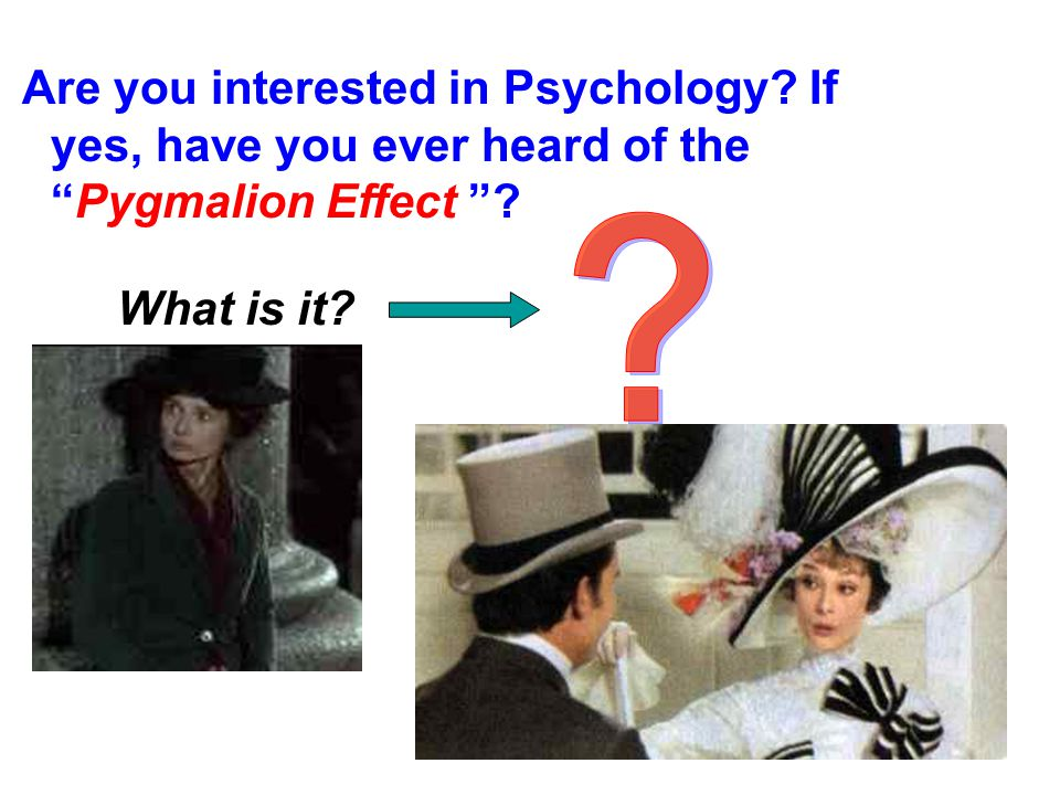 Are you interested in Psychology