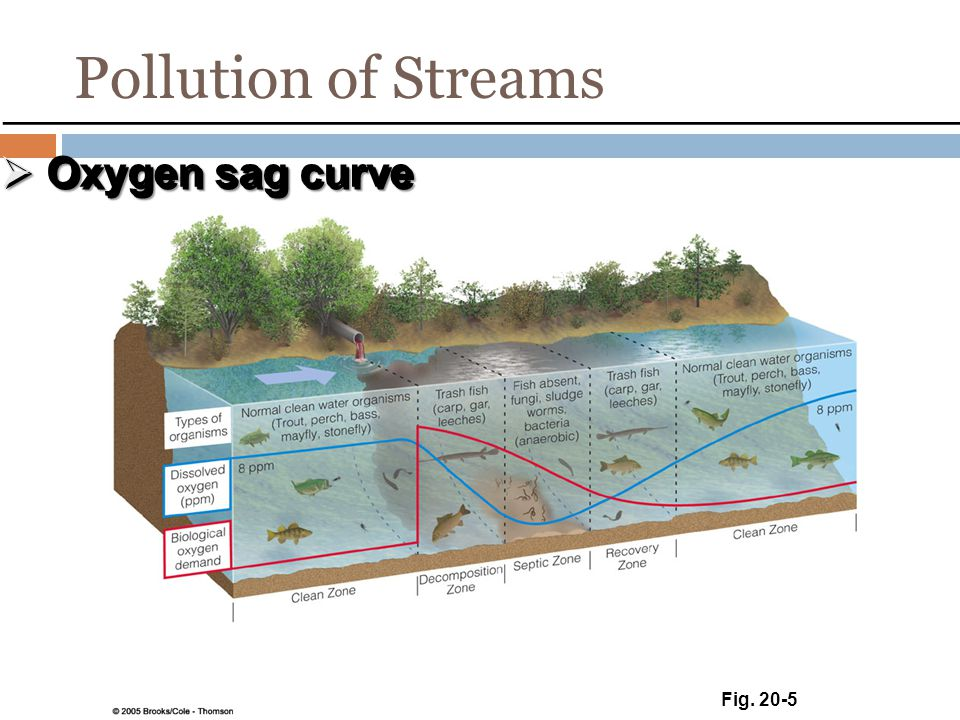 Pollution of Streams Oxygen sag curve Fig. 20-5