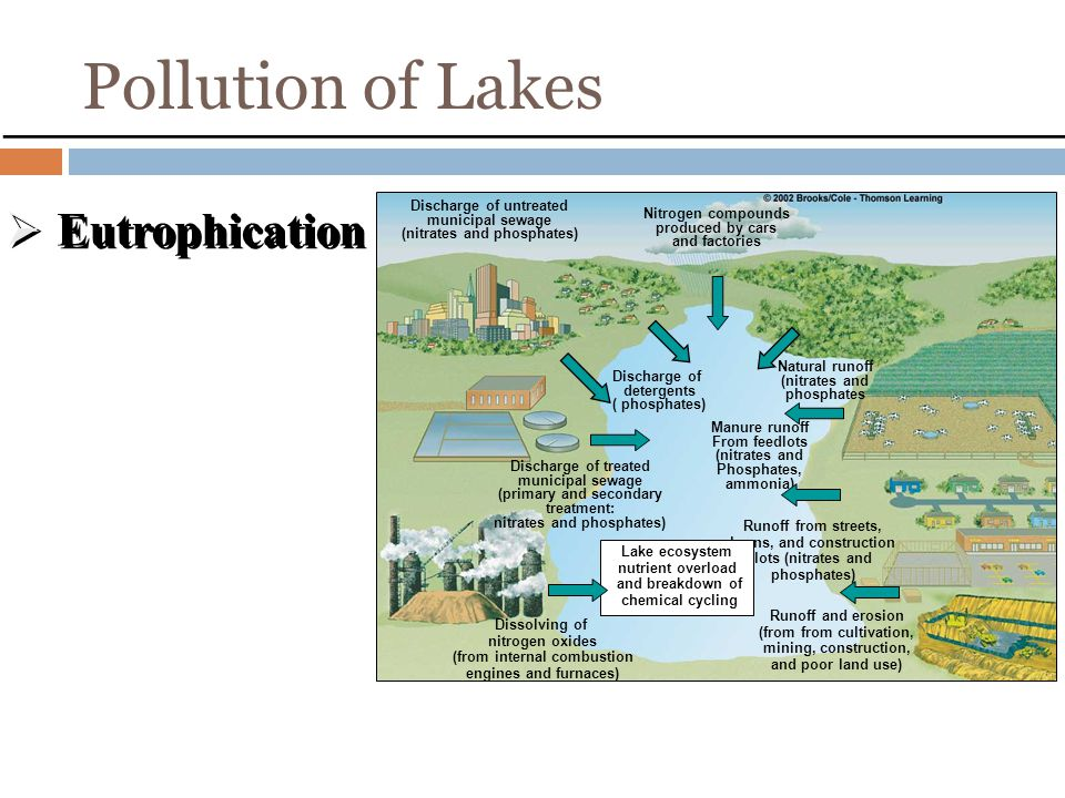 Pollution of Lakes Eutrophication Aging of lakes Fig .22.7, p. 499