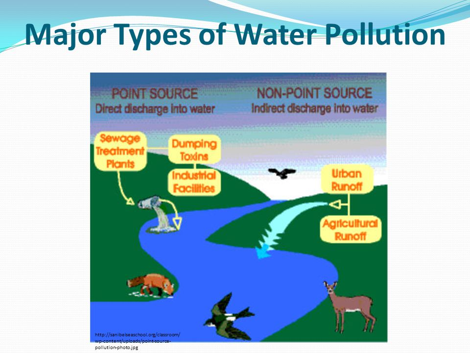 Major Types of Water Pollution