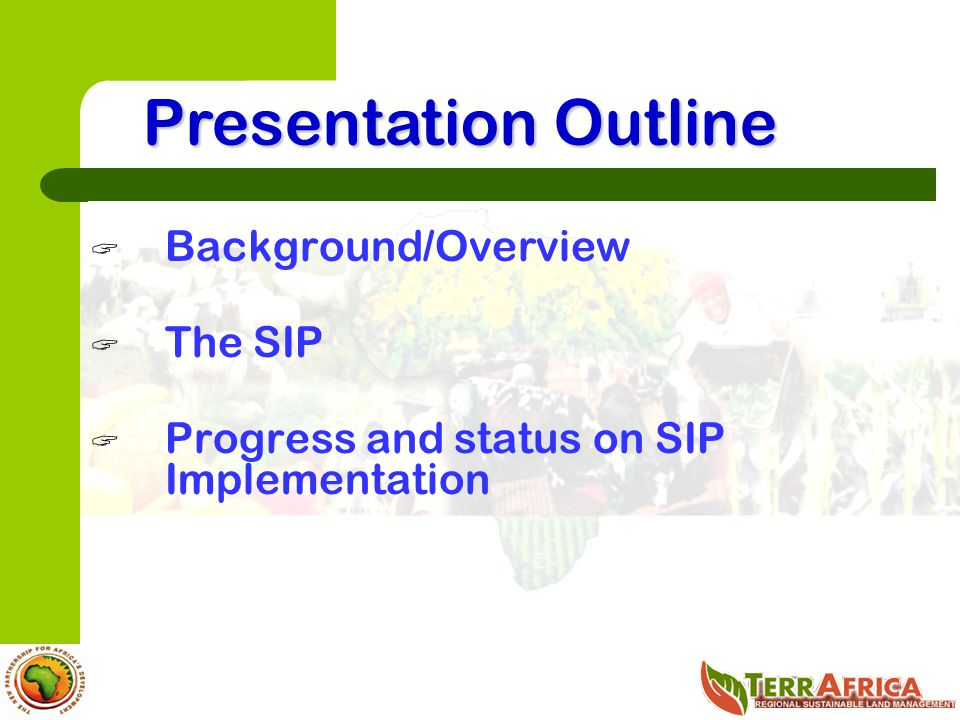Presentation Outline Background/Overview The SIP